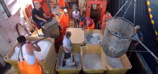 Ribari traže smanjenje PDV-a na sve proizvode ribarstva