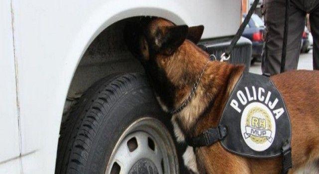 Policijski pas najušio drogu na odmorištu Nadin
