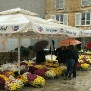 SJEĆANJE NA NAJMILIJE Ni kiša nije omela Zadrane u kupnji cvijeća za svoje pokojne