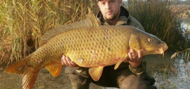 REKORD Na Vranskom jezeru ulovljen šaran težak 21 kilogram!