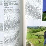 Niz stručnih časopisa u Austriji bavi se umjetničkom stvaralaštvom T. M. Bilosnića