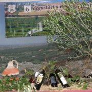 Degustacija mladih vina i maslinovih ulja Nadin 2015