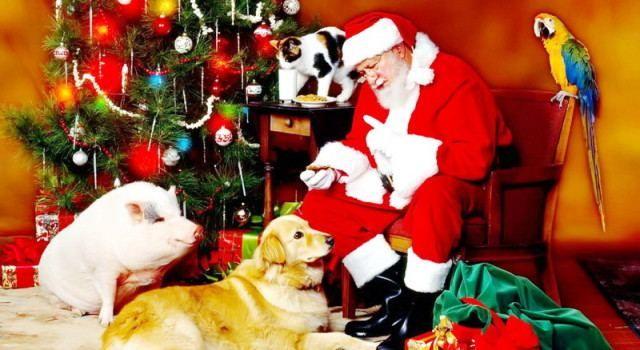 POZIV Prijavite se i sudjelujte ove subote u utrci djedova Božićnjaka!