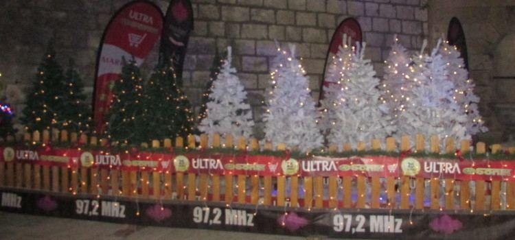 Tvrtka Sonik darovat će 25 božićnih jelki socijalno ugroženim obiteljima