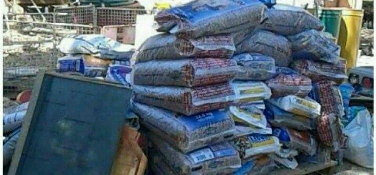 Dobri ljudi iz Njemačke donirali veću količinu hrane za napuštene pse u azilu