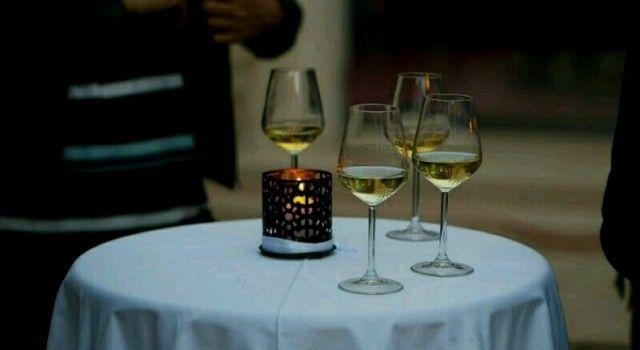 Degustacija vina i maslinovih ulja u Nadinu