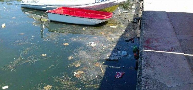 BIOGRAD Turisti zgroženi prljavštinom u uvali Jaz