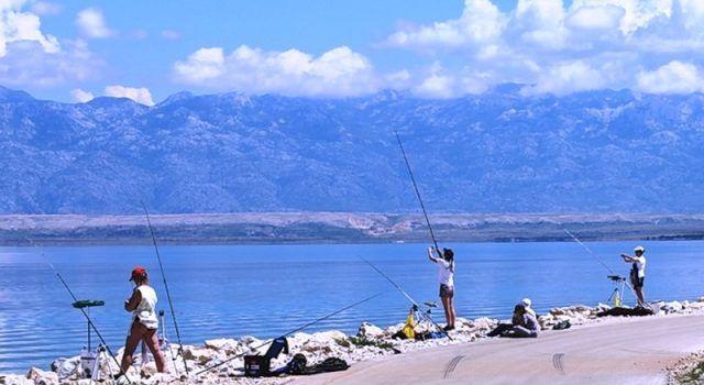 U VIRU Međužupanijsko prvenstvo u sportskom ribolovu