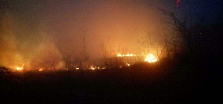 VIDEO Planuo požar u Lišanima, mještani u strahu za kuće istrčali gasiti