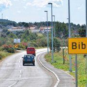 Općina Bibinje nije dala suglasnost za sječu borova ni sadnju rogača!