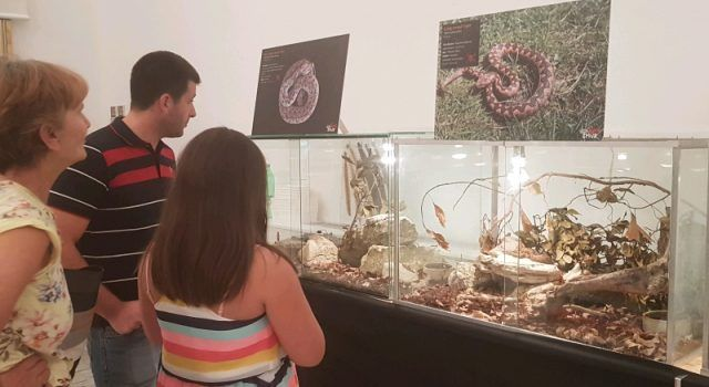 GALERIJA Veliki interes za izložbu najotrovnijih zmija na svijetu