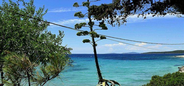 KULTURNO LJETO NA SILBI Zabava na najudaljenijm zadarskom otoku