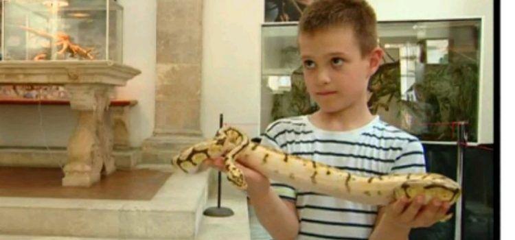 """Izložba """"Najotrovnije zmije svijeta"""" od ponedjeljka u Gradskoj loži"""