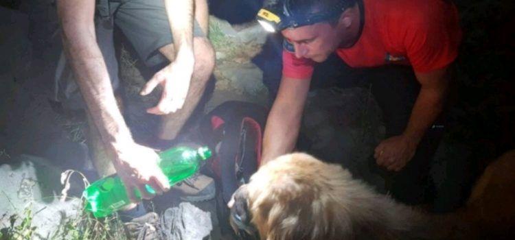 Članovi HGSS-a spasili na Paklenici izgubljenog, gladnog i žednog psa