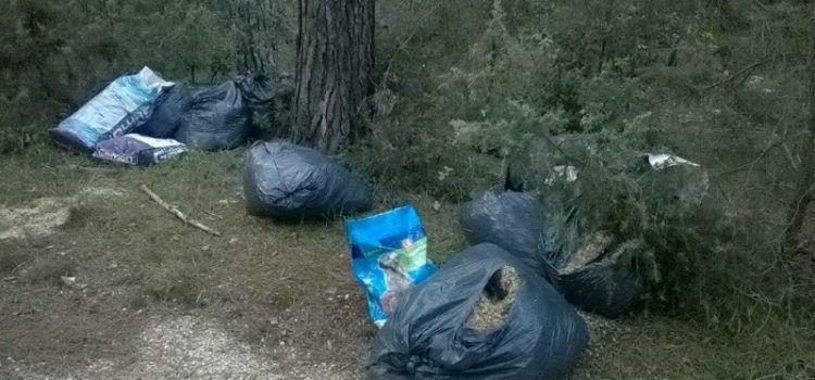 """Manifestacija """"Grad u šumi"""" trebala bi oživjeti područje Park šume Musapstan"""