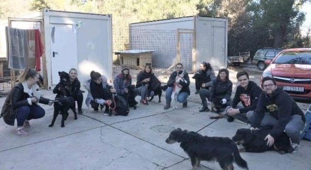 LIJEPA GESTA Grupa mladih Zadrana izvela pse iz azila u šetnju