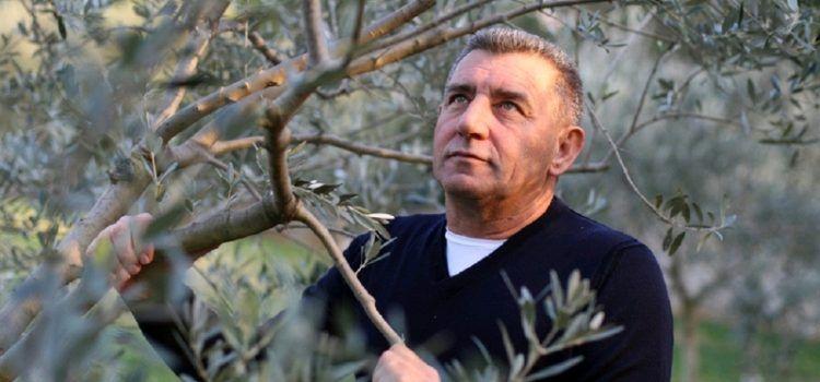 I general Gotovina se natječe u kvaliteti mladog maslinovog ulja