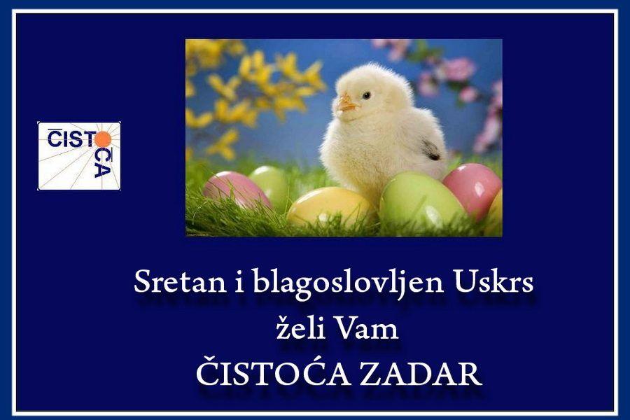 CISTOCA-1