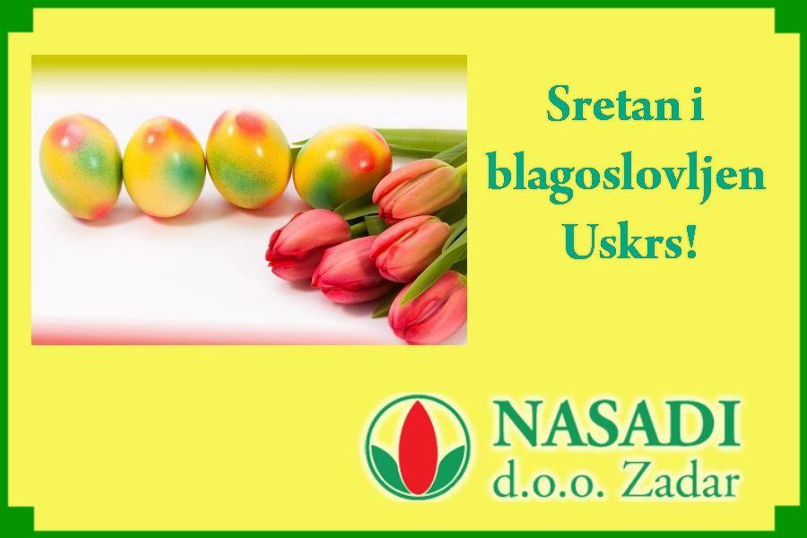 NASADI-1