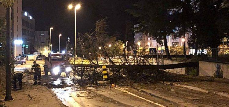 VIDEO Olujno nevrijeme sinoć je rušilo stabla i oštetilo automobile