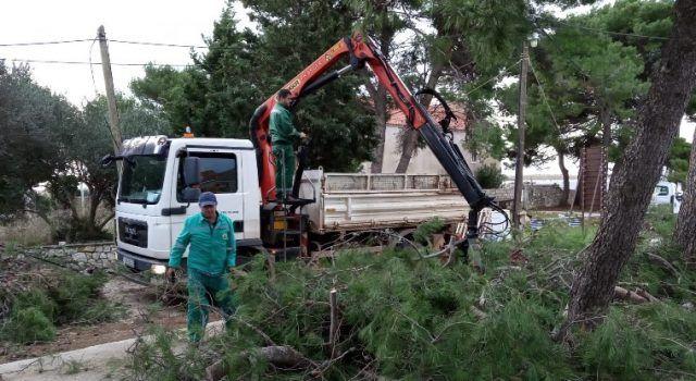 Djelatnici Nasada uklonili stabla porušena tijekom nevremena na otoku Premudi