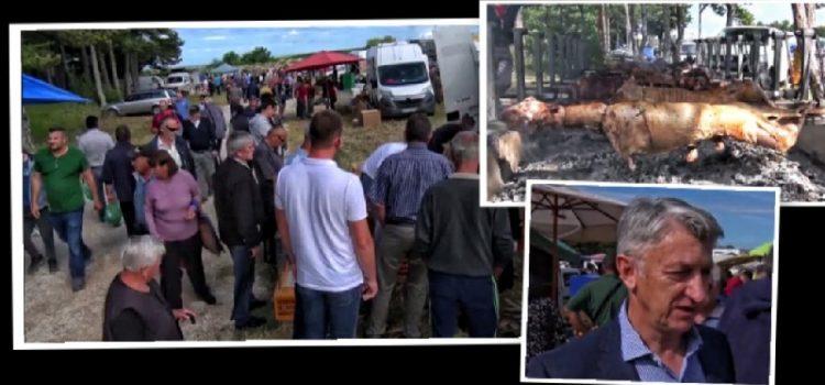 Benkovački sajam: Peklo se stotinu janjaca, župan Longin jeftino kupio motiku