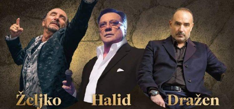 Koncerti Bebeka, Halida i Zečića u srpnju na prostoru konobe Kamen u Crnom